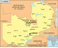 zambie-petite-carte